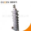 专业生产 带复合绝缘外套 氧化锌避雷器 高品质出口型避雷器