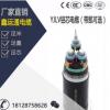 供应铠装铝芯电缆 YJLV22 2芯带凯交联电力电缆埋地电缆