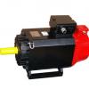 13kW-2000转交流伺服电机FMZ-250-2013