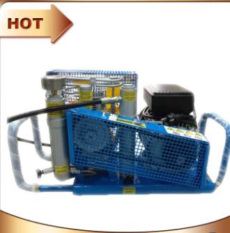 MCH13/ET正压呼吸器充气泵 高压空气呼吸器打气机 可配防爆充气柜