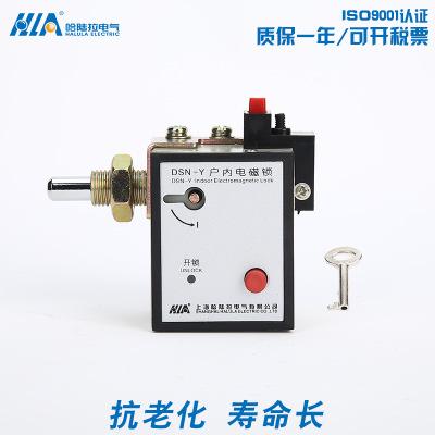 热销推荐 DSN-Y型右开安装高压柜柜门电磁锁 户内高压电磁锁