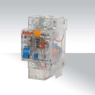 厂家直销DZ47LE-63/2P塑壳漏电断路器透明小型断路器价格从优