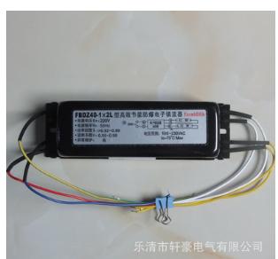 厂家直营 FBDZ40-1×2L 1托2 防爆单脚荧光灯高效节能电子镇流器