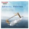 华册电气RW12-24KV/100A户外高压跌落式熔断器令克开关厂家直销