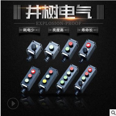 厂家批发防爆防腐控制按钮 带灯主令控制器操作柱 三防按钮LA5821