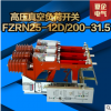 夏企电气 FZRN25-12D/200-31.5高压真空负荷开关 厂家直销