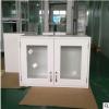 非标钣金实验室 挂柜 实验室存储设备 壁柜 实验室双门吊柜