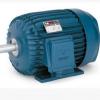 优势供应意大利Isgev三相异步电机、单项异步电机等全系列产品