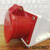 厂家直销 WN-125 ip44工业插座三相五线 5芯32a 电源插座批发