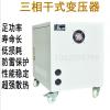 干式自藕变压器380v变220v200v480v三相隔离变压器SG-20 30 50KVA
