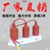 勇高TBP-A B-12.7F/131三相组合式过电压保护器10KV过电压保护器