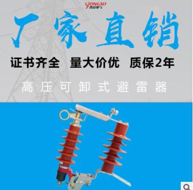 勇高10KV可卸式避雷器HY5WS-17/50DL-TB跌落式氧化锌避雷器10KV