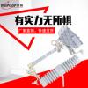 供应RW12-15F/100_200A户外高压跌落式熔断器10KV高压跌落保险