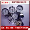膜盒压力表 全不锈钢隔膜压力表 100轴向压力表