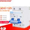 DZ47-100A/2P63A80A125A高分断小型断路器空气开关