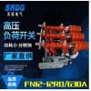 厂家直销FN12-12RD/T125户内真空高压负荷开关10kv带熔断器带接地