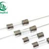 厂家直销 5X20标准3C ROHS 1A 2A 5A 10A 保险丝玻璃管