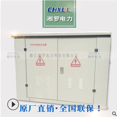 DFW-40.5kv高压电缆分接箱转接箱不锈钢外壳户外铜排进出线避雷器