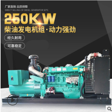柴油250KW大输出功率大型发电机组低能耗船用发电机潍坊发电机组