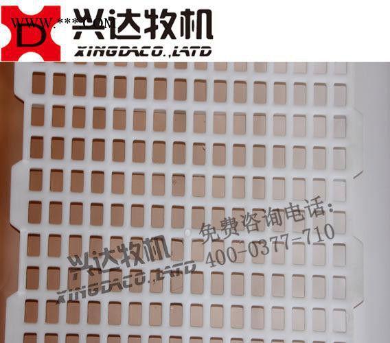 养鸡专用漏粪板 种鸡地板网 自动化养殖设备直销