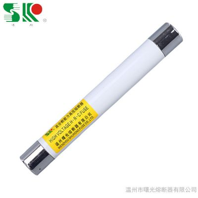 曙光XRNP1-12 高分断能力 高压限流 熔断器 XRNP系列  XRNP-12KV XRNP-40.5KV