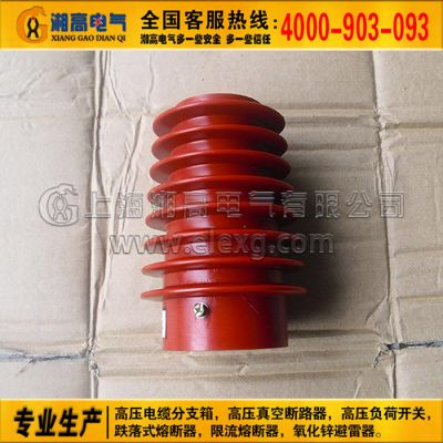 CG5-10Q/100*140户内高压带电显示装置传感 高压电缆分支箱高压真空断路器开关高压隔离开关跌落式熔断器氧