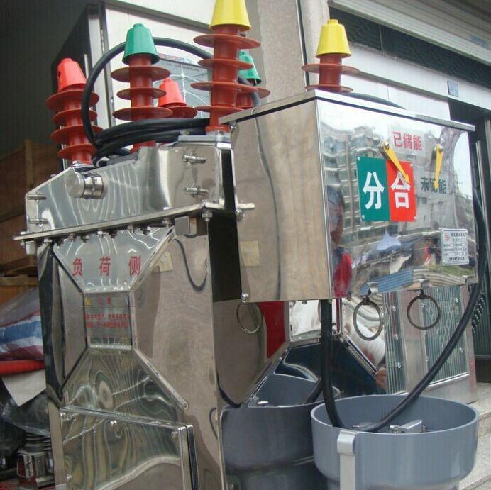 西安泰高zw8-12/630户外高压真空断路器现货 西安高压断路器