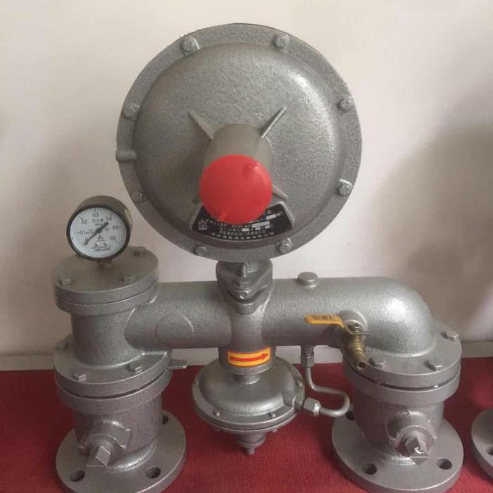 燃气调压器,强星DN25-DN250
