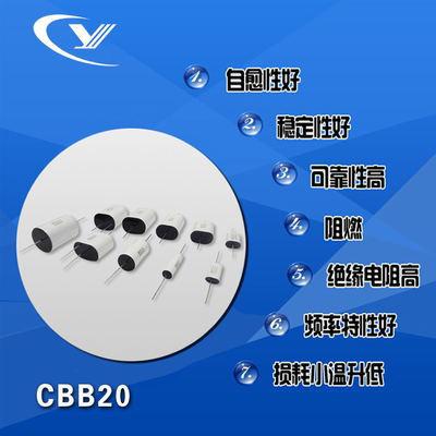 纯源【厂家批发】CL20 EPS电源 包装机电容器定制CBB20 22uF/250V