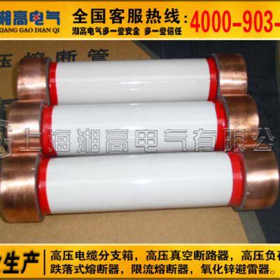 电力电容专用保护器XRNC-7.2KV/40A XRNC-6.3 12KV高压熔断器