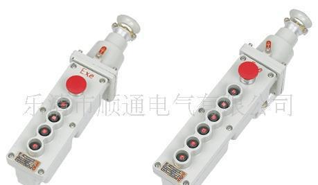 防雨型COB-64BH起重远程控制按钮 带急停