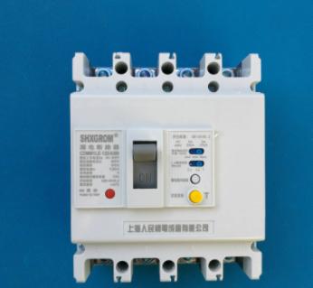CDM1LE-125/4300 白壳 塑壳漏电断路器 上海人民125A全国发货