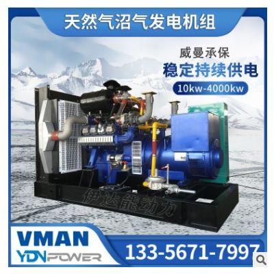 伊达能威曼动力150kw污水处理用燃气发电机组设备