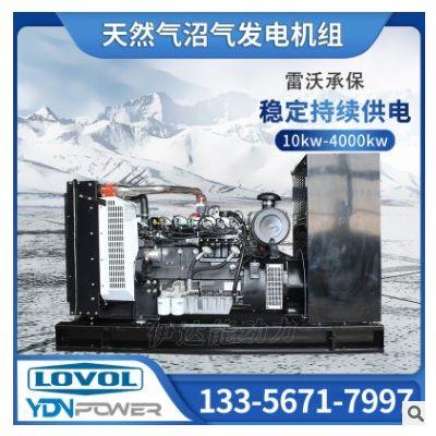 伊达能雷沃动力80kw污水处理用燃气发电机组设备