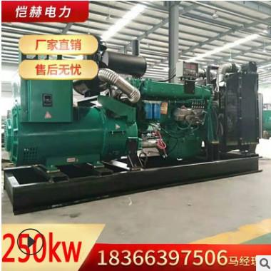 厂家定制250KW千瓦柴油发电机发电机250千瓦学校小区商场工厂备用