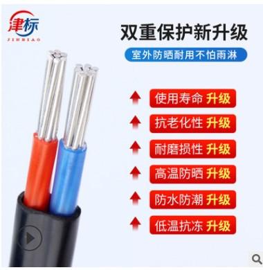国标铝芯线BLVVB 6 16 25 35平方电力户外铝芯电缆线2芯电线铝线