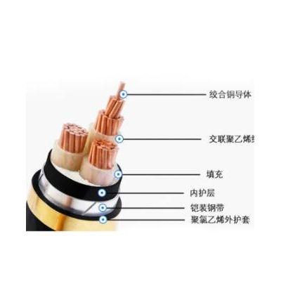 湖南国标铜芯电缆线铠装电力电缆 YJV/VV/VLV低压阻燃包检测厂家